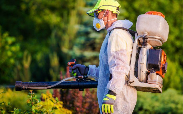 شركة مكافحة حشرات بالدمام 0551438994 مكافحة الصراصير و بق الفراش بالدمام