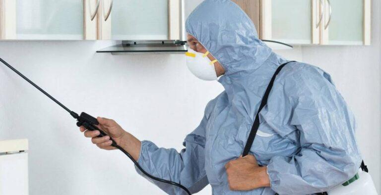 شركة مكافحة حشرات بالقصيم 0551438994 مكافحة النمل الابيض – اللمسة الاخيرة